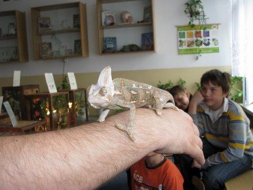 Fotografie z artykułu: Ciekawa lekcja przyrody...