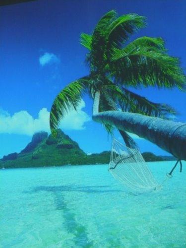 Fotografie z artykułu: Wirtualna podróż dookoła świata