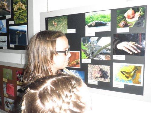 Fotografie z artykułu: Podsumowanie XV Międzyszkolnego Konkursu Fotograficznego 'Moje spotkania z przyrodą'