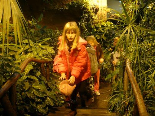 Fotografie z artykułu: Zajęcia dydaktyczne w płockim zoo