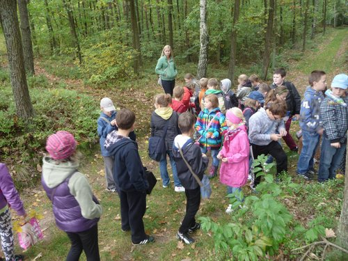 Fotografie z artykułu: Edukacja przyrodnicza w Nadleśnictwie Łąck