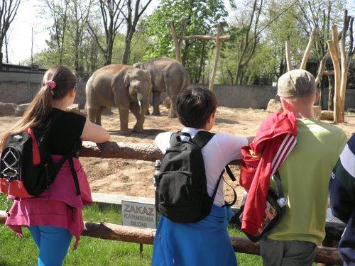 Fotografie z artykułu: Przyrodnicy w zoo