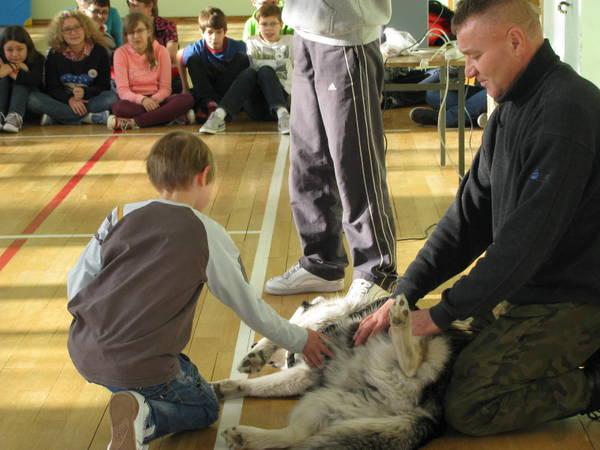 Fotografie z artykułu: Jak zachować się podczas ataku psa?