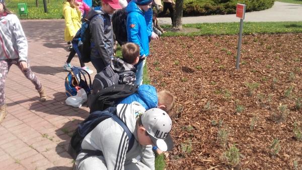 Fotografie z artykułu: Posadziliśmy rośliny w Parku Północnym