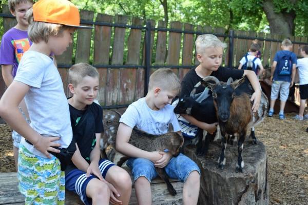 Fotografie z artykułu: 4 sportowa na zajęciach w płockim ZOO